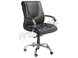 Economical Director Chair